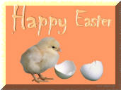 Cute chicken Easter Greeting